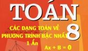 Các dạng toán về Phương trình bậc nhất một ẩn và bài tập vận dụng - Toán lớp 8